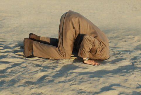 esconder-la-cabeza-como-el-avestruz 1